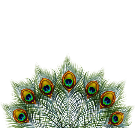 Beautiful vector peacock feathers on retro background with space for text. Illustration