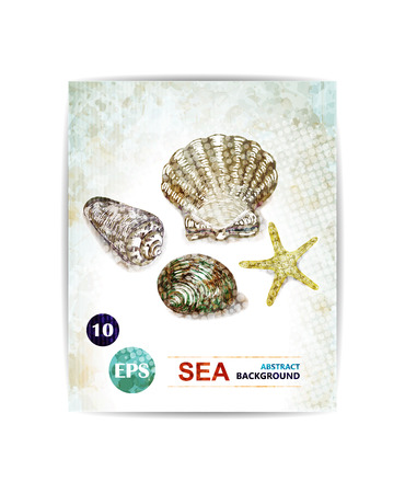 Vector vintage marine background with seashells. Card with sea theme.