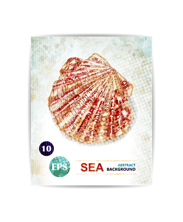 Vector vintage marine background with seashell. Card with sea theme.