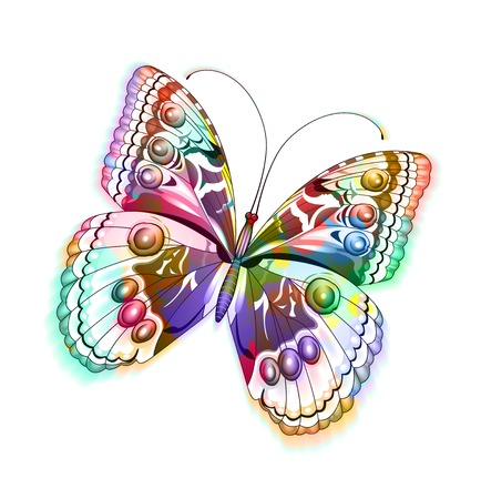 Colorful  isolated butterfly.