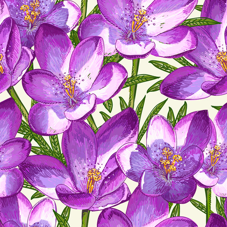 Seamless pattern with crocuses. Beautiful illustration for your desig. Stock Illustratie