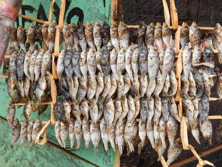 Small dried fish hanging photo