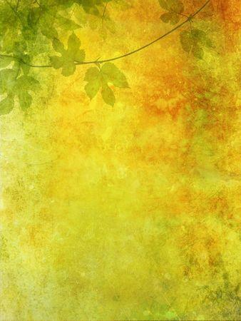Grunge background con foglie di uva Archivio Fotografico - 3497444