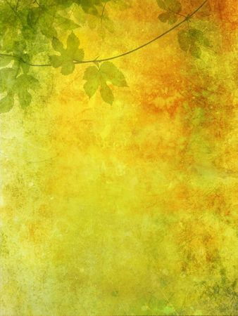 Grunge background with grape leaves photo