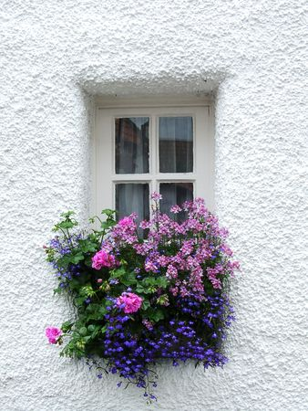 Old Scottish window with flowers Stock Photo