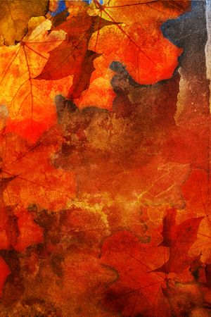 Autumn grunge background with naple leaves