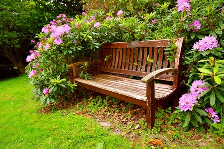 A bench with flowers in springtime