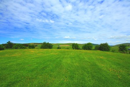 Summer landscape Stock Photo - 7236544