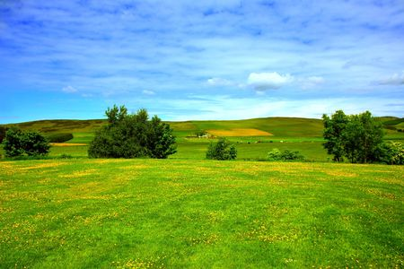 Beautiful summer landscape, in Scotland Stock Photo - 7236556