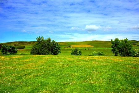 Beautiful summer landscape, in Scotland Stock Photo - 7236556