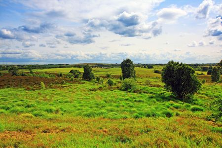 Scottish landscape with grass in summertime photo