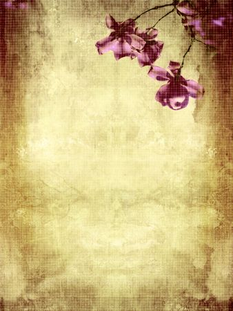Beautiful grunge background with magnolia flowers