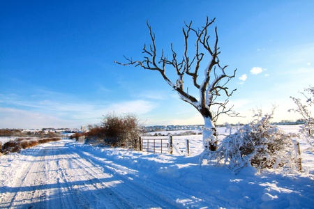 Snowy road in the countryside, Scotland Stock Photo