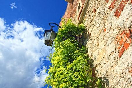 wawel: Wawel Castle, Cracow, Poland, Europe
