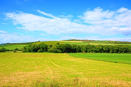 Sunny landscape with fields and blue sky in Scotland Stock Photo - 9253933