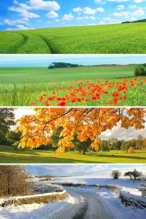 4 seasons collection, vertical Stock Photo - 9305828