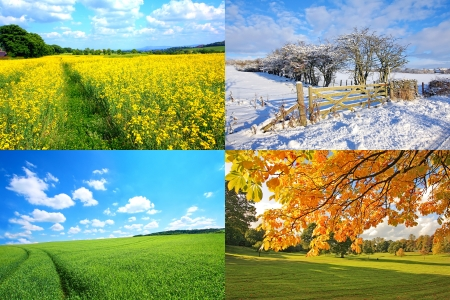 4 seasons collection, horizontal  Stock Photo