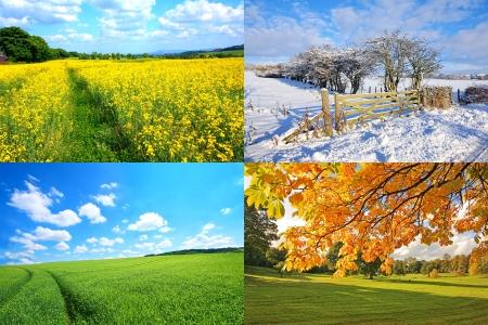 4 seizoenen collectie, horizontale