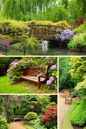 ガーデン コレクション、夏の時間 写真素材