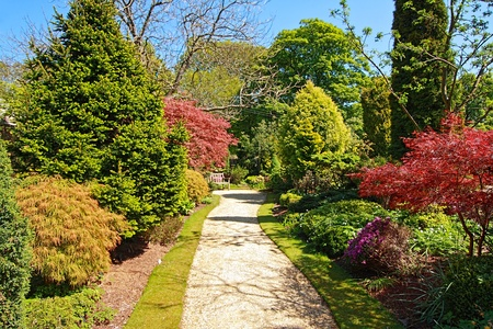 Beautiful Spring garden on sunny day photo