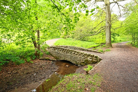 Small, stony bridge in the park in Scotland photo