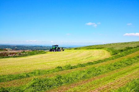 haymaking: Haymaking on suny day in Scotland