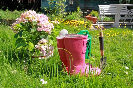 wellingtons: Pink wellingtons in the Spring garden Stock Photo