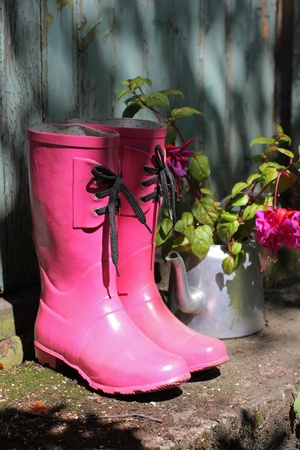 wellingtons: Pink wellingtons and flowers in front of an old shed  Stock Photo