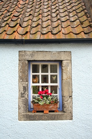 Lovely old window with flowers photo