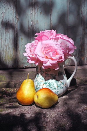 Beautiful vase with  pink roses and pears in the garden  photo