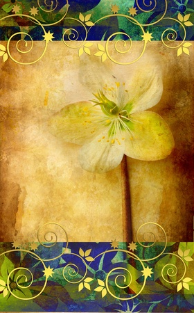 Grunge background with hellebora and golden swirls  photo