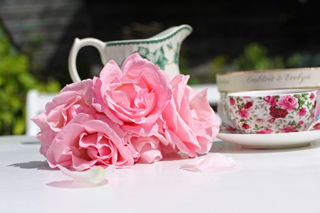 Pink roses and an elegant teacup in the morning  garden  photo