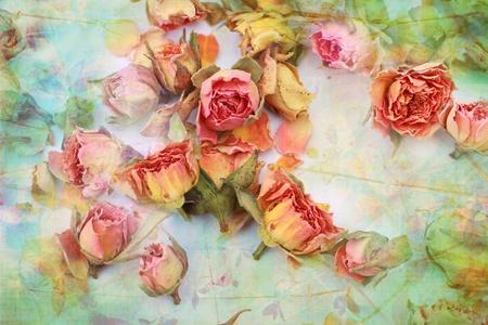 Rosas secas fondo vintage hermosa Foto de archivo