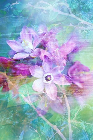 Natural flowers grunge beautiful, artistic background  photo