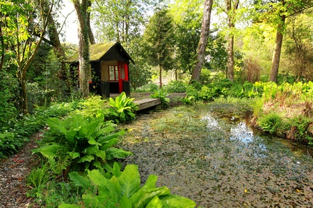 Beautiful romantic garden with a pond and a shed in Springtime photo