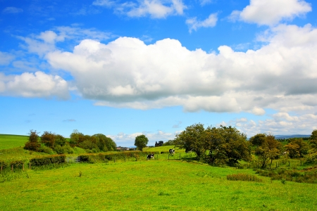 Beautiful Spring landscape in Scotland Stock Photo - 13717740