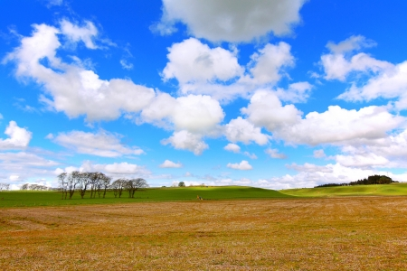Beautiful Spring landscape in Scotland Stock Photo - 13717747