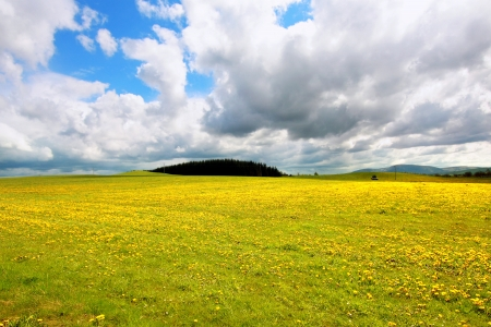 Beautiful Spring landscape in Scotland  Stock Photo - 13717744