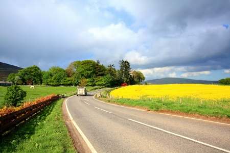 Rural Scottish road with fields of rape, on sunny day photo
