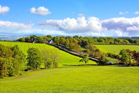 Beautiful, Spring landscape in Scotland photo