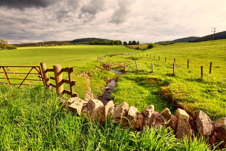 Spring rural landscape with stone wall and wooden fence,  Scotland  Stock Photo - 14064176