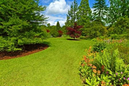 Garden landscaping, Srpingtime  photo