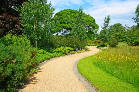 Garden landscaping with a path photo