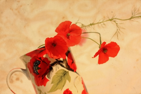Pretty floral grungy background with red poppies photo