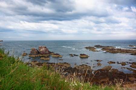Seashore in St Abbs, Berwickshire, Scotland, United Kingdom  Stock Photo - 15885352