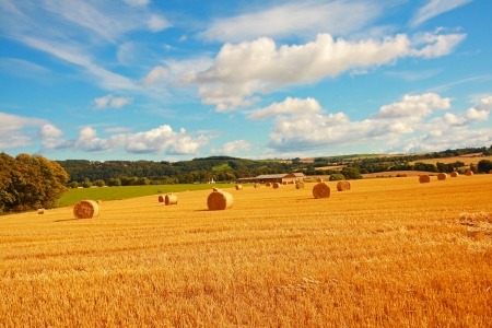 Scenic landscape with haybales on Summer day photo