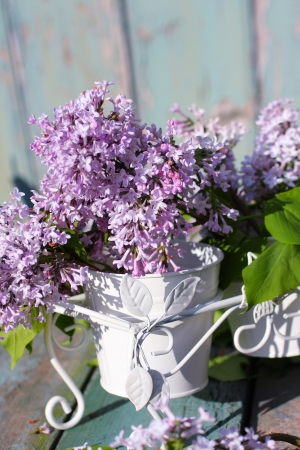 Beautiful , soft lilac in a white vase retro style  Stock Photo - 20163061