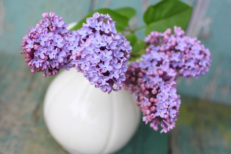 Lovely lilac in the vintage vase close up Stock Photo - 20163153
