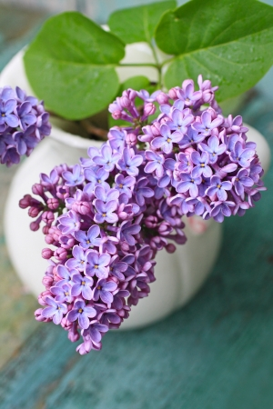 Lovely lilac in the vintage vase close up Stock Photo - 20162144