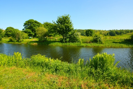 waterway: Forth and Clyde Canal in springtime in Scotland